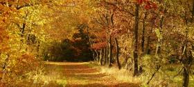 Genießen Sie 2 Übernachtungen im Herbst mit HP, Wellnessnutzung und vielem mehr