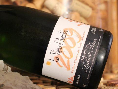 champagner lightbox 4