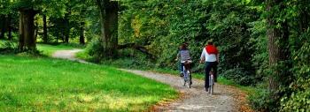 Wellness, Radfahren, Wandern - bei uns sind Sie richtig! Der Pfälzer Wald bietet zu jeder Jahreszeit Aktivitäten und Attraktionen